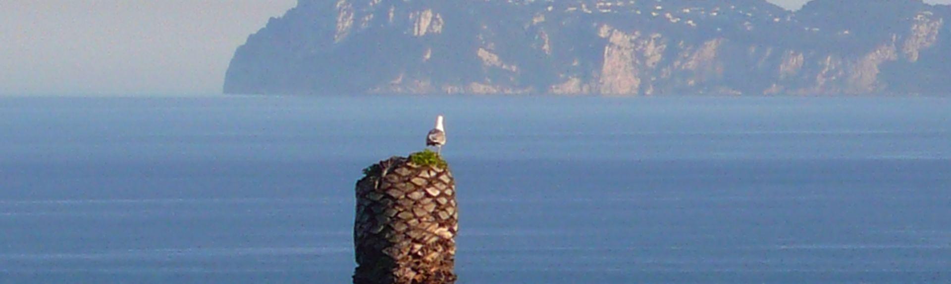 Fuorigrotta, Napels, Campania, Italië