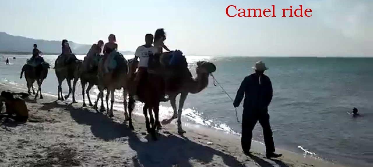 Hammam-Lif, Ben Arous, Tunisie