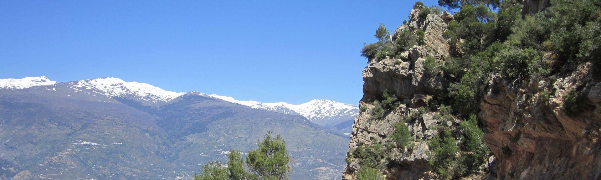 Pinos del Valle, El Pinar, Andalousie, Espagne