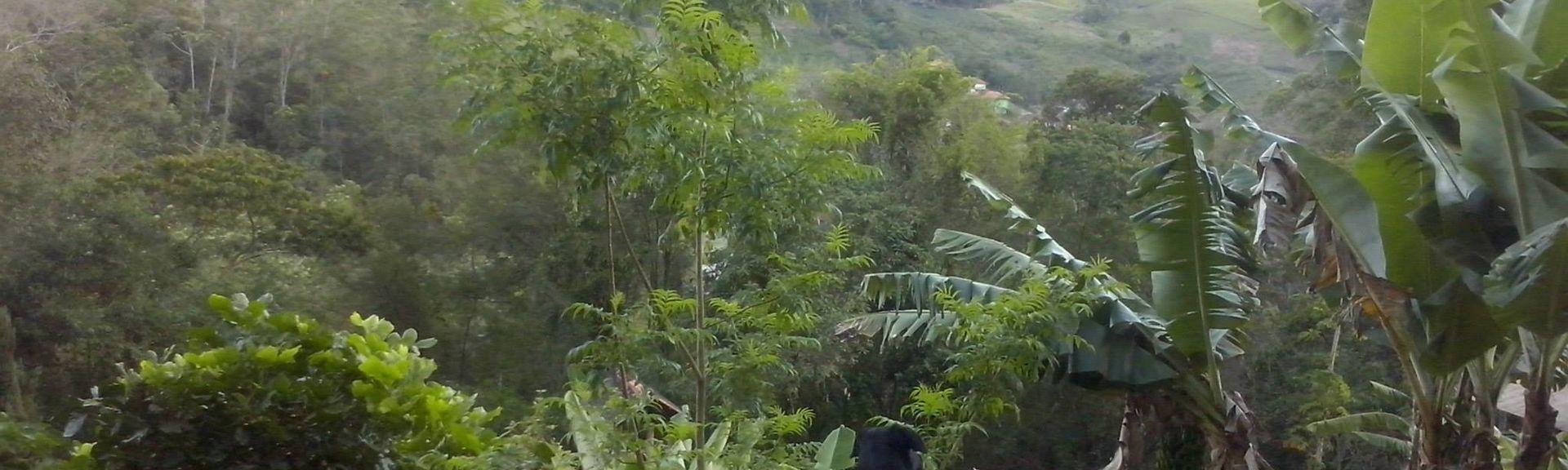 Nova Friburgo, Estado de Río de Janeiro, Brasil