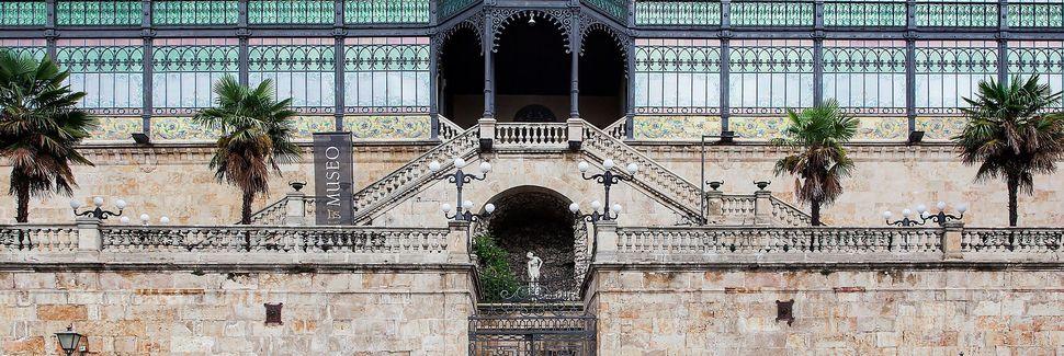 Salamanca, Castilla y León, España