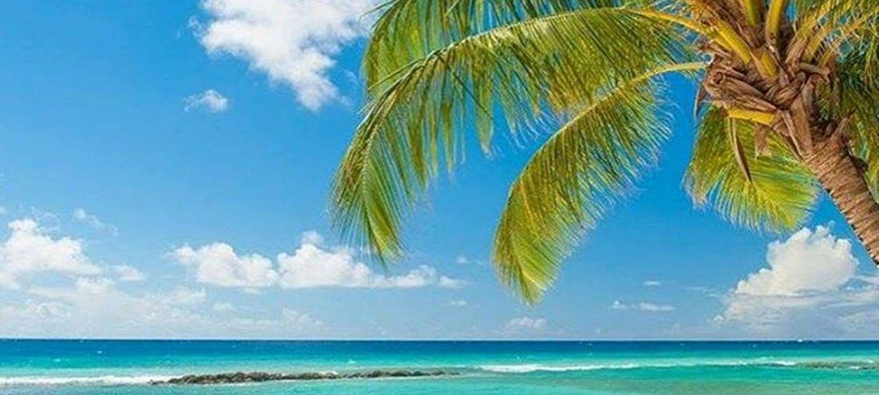 Rendezvous, Bridgetown, Barbados