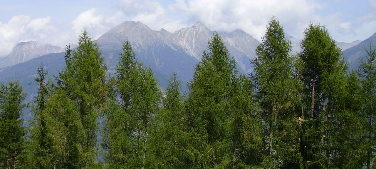 Lendorf, Carinthia, Austria