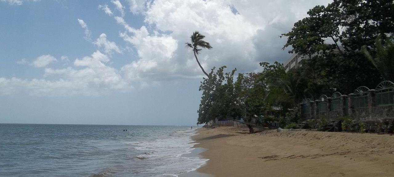 Calvache, Rincón, Puerto Rico