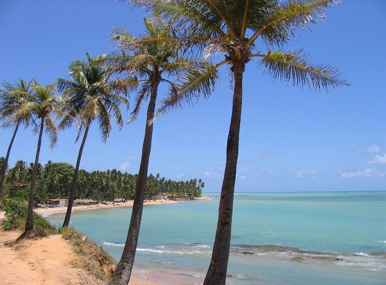 Ponta do Mangue Beach, Maragogi, Brazil