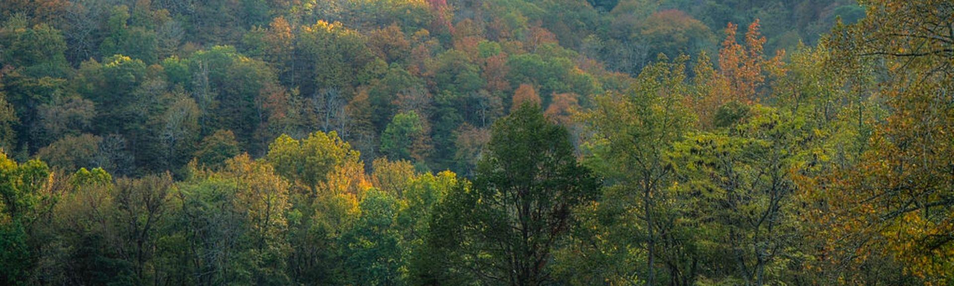 Mountain Home, AR, USA