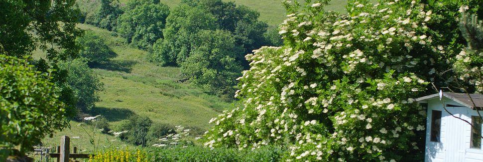 Alton, Dystrykt Staffordshire Moorlands, Anglia, Wielka Brytania
