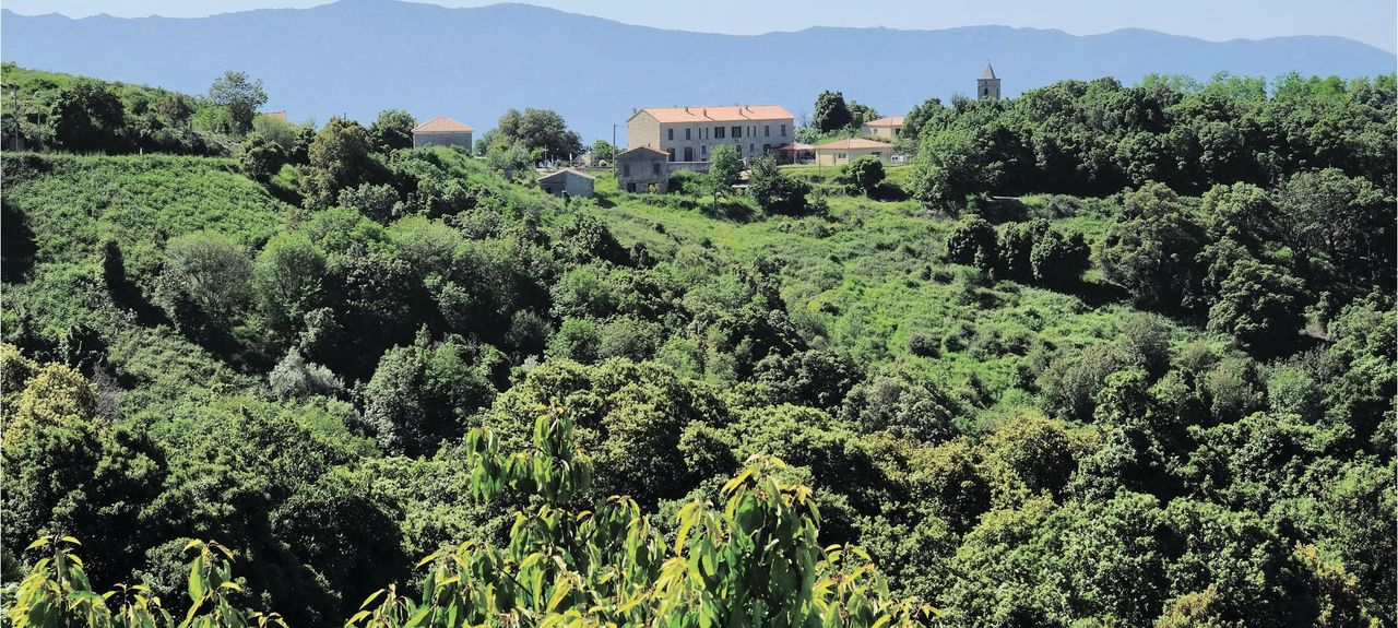 San Cipriano, Corse du Sud, France