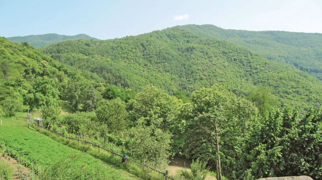 Abetone, Pistoia, Tuscany, Italy
