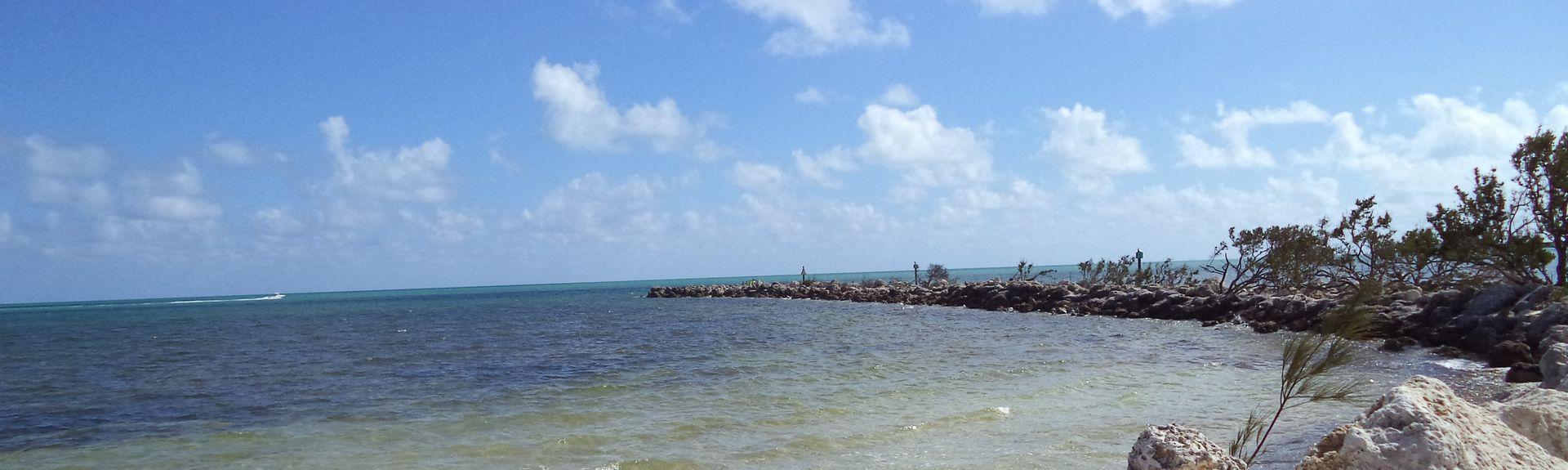 Dolphins Plus Bayside, Key Largo, FL, USA