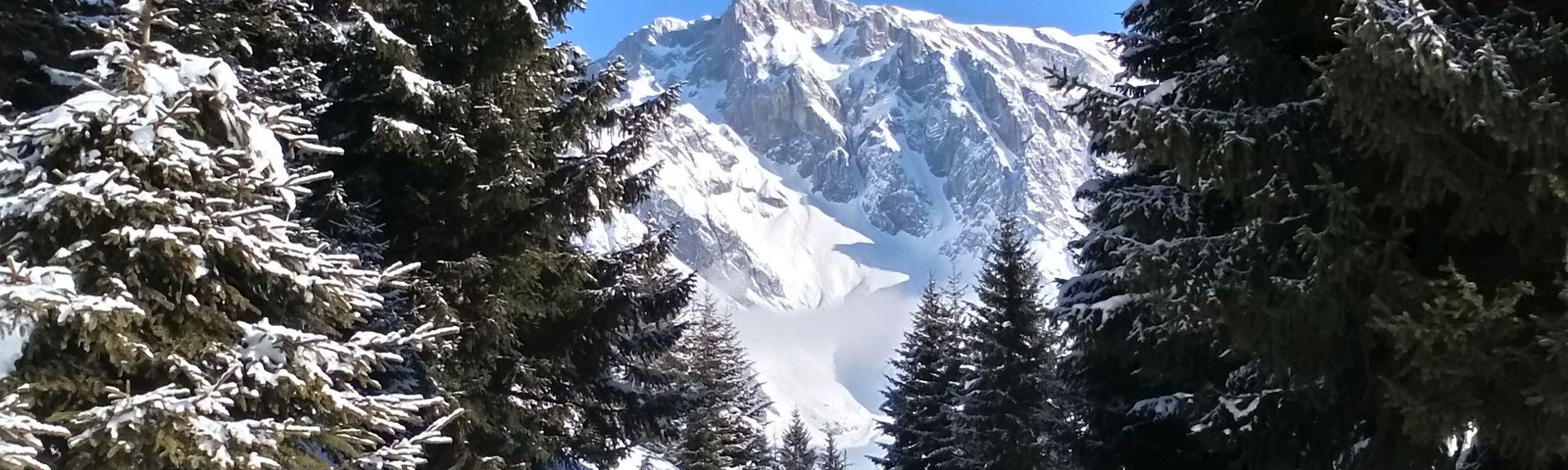Skigebied Grossarltal, Salzburg (staat), Oostenrijk