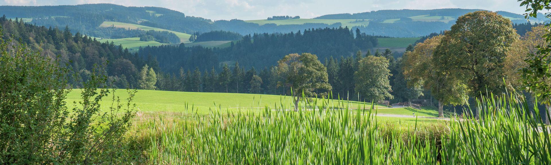Região administrativa de Freiburg, Baden-Wuerttemberg, Alemanha