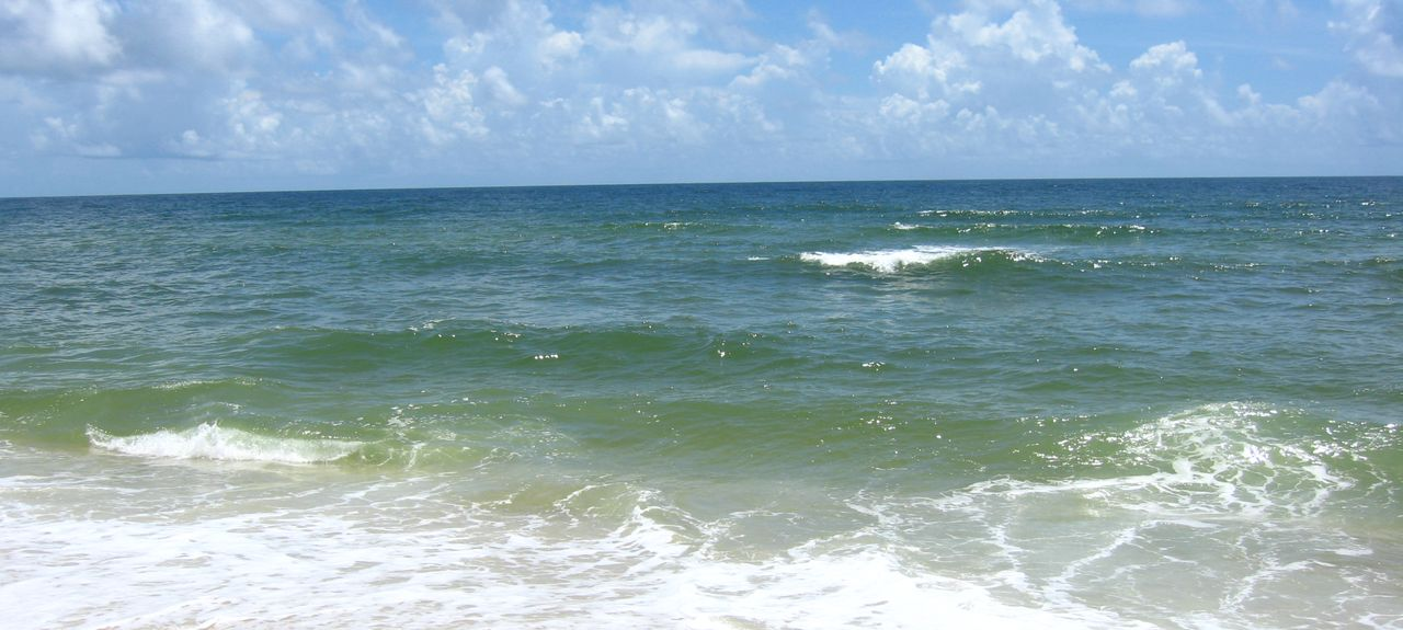 Grand Caribbean East & West (Perdido Key, Florida, United States)