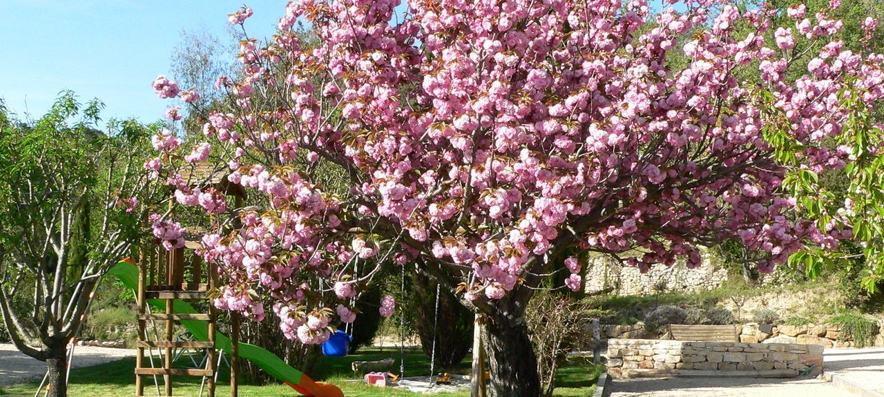 Salazac, Occitanie, France