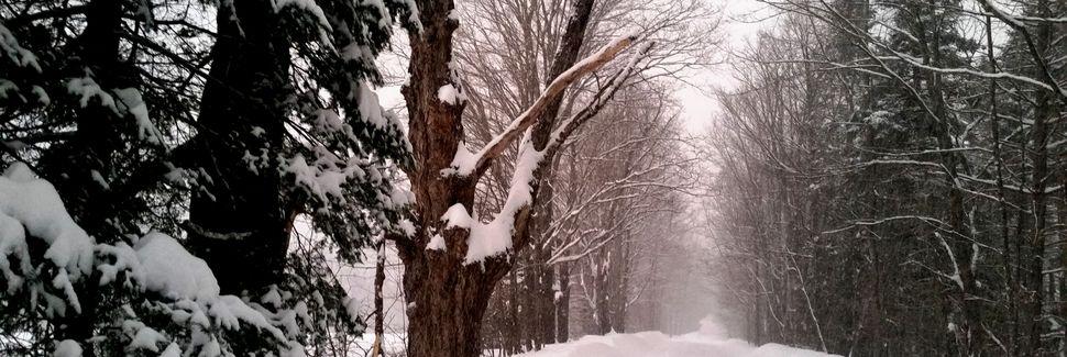 Greensboro, Vermont, Estados Unidos