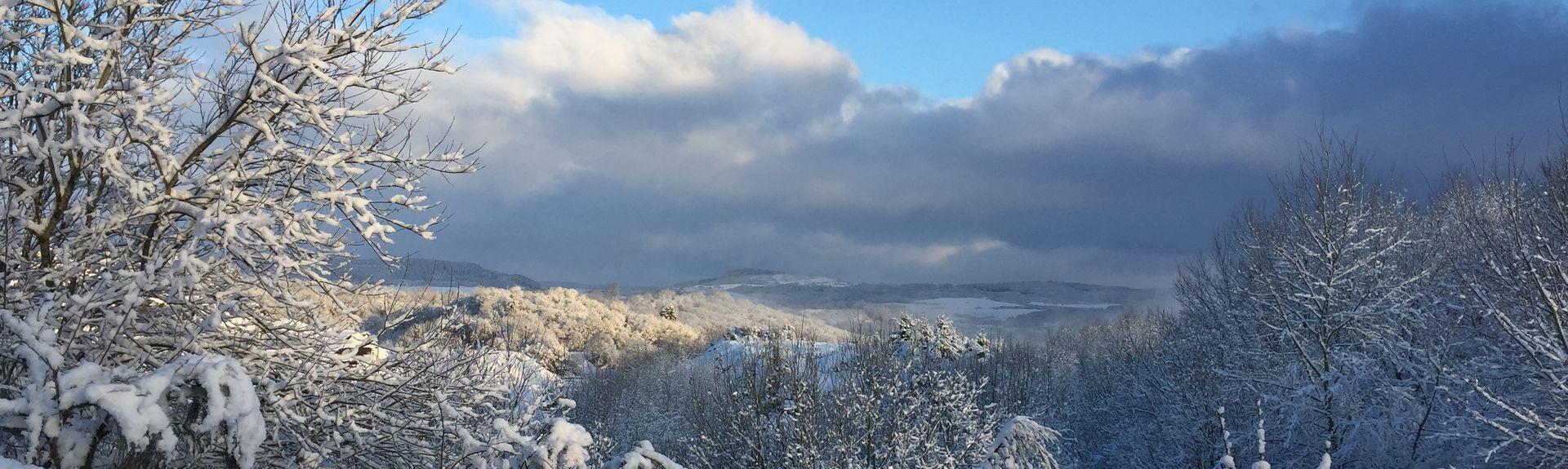 Oberstadtfeld, Rhineland-Palatinate, Allemagne