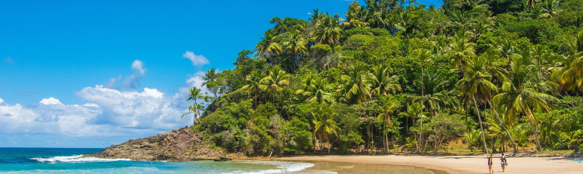 Costa do Cacau, Baía, Brasil