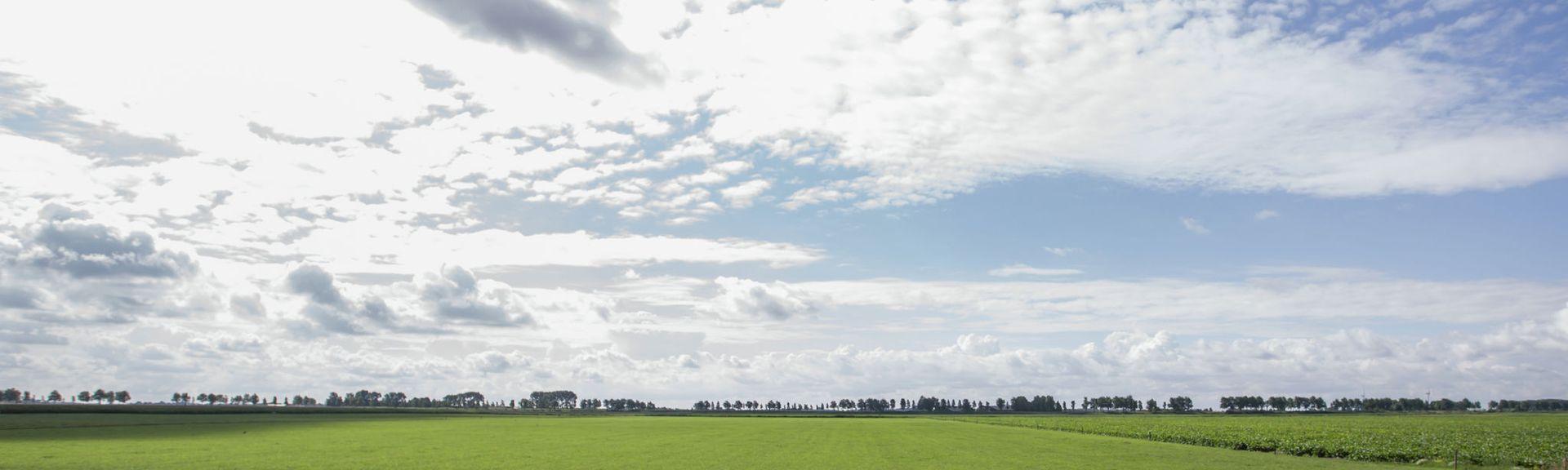 Stellendam, Zuid-Holland, Nederland