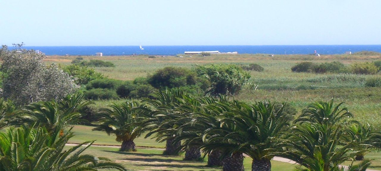 Dom Pedro Golf: Laguna Golf Course (Quarteira, Faro, Portugal)