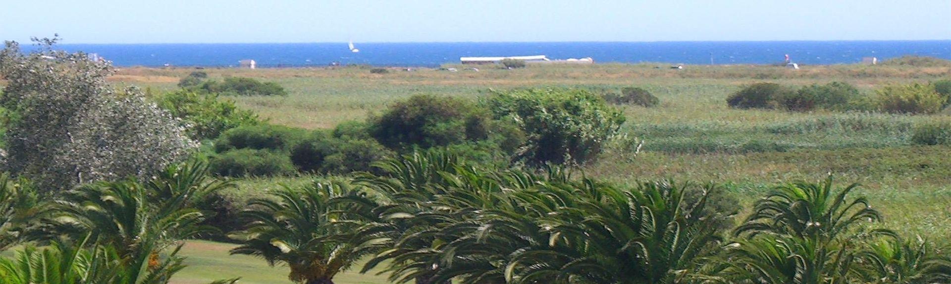 Dom Pedro Golf: Laguna golfbane (Quarteira, Faro, Portugal)