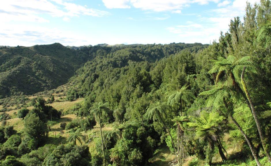 National Park, Manawatu-Wanganui, New Zealand