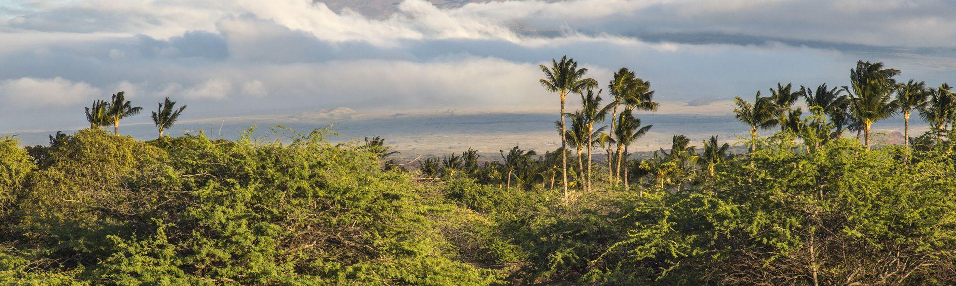 Mauna Lani (Puako, Hawaï, États-Unis d'Amérique)