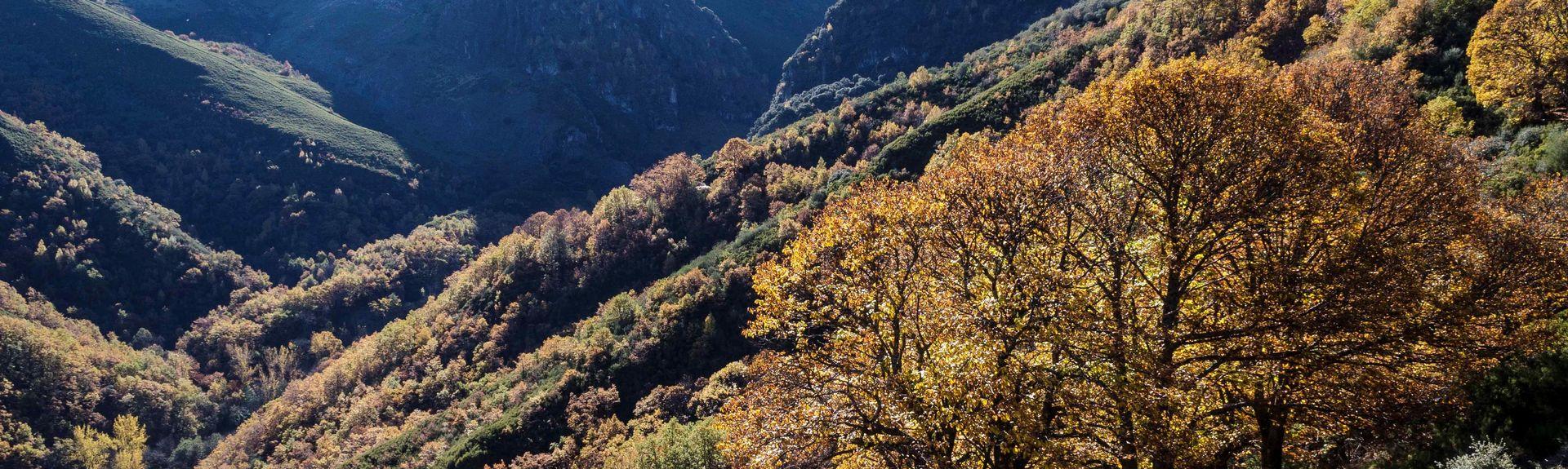 Castropodame, León, Castilla y León, Spain