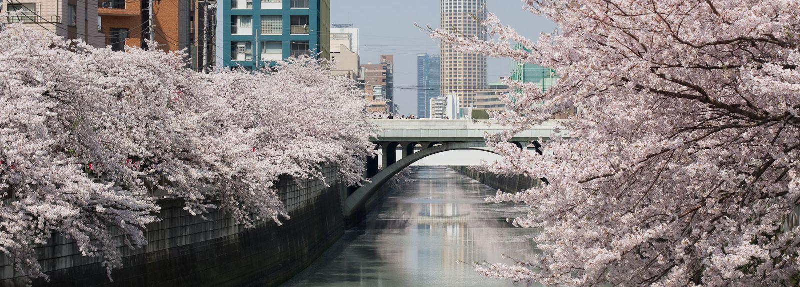 Yokohama, Kanagawa (prefektur), Japan