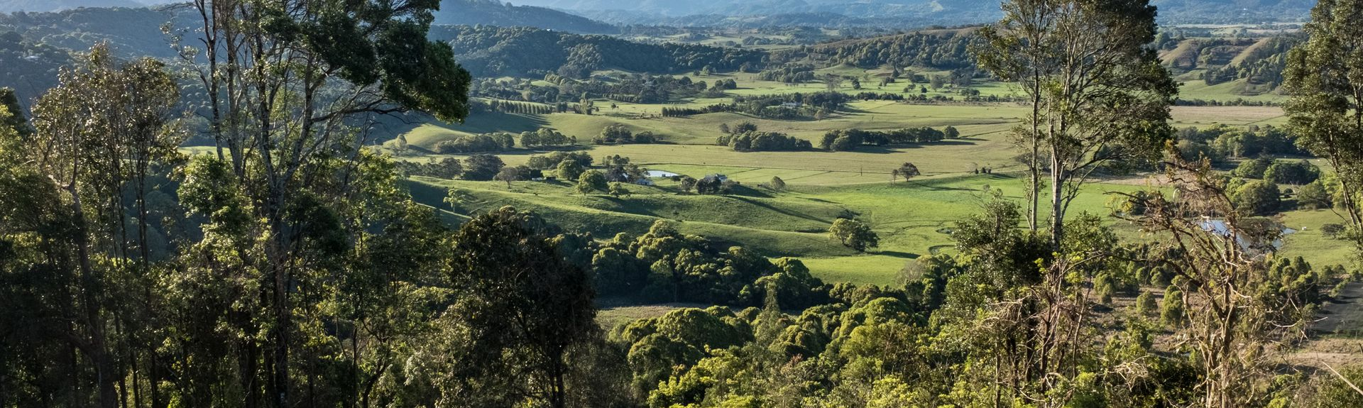 Byron Bay Hinterland, New South Wales, Australien