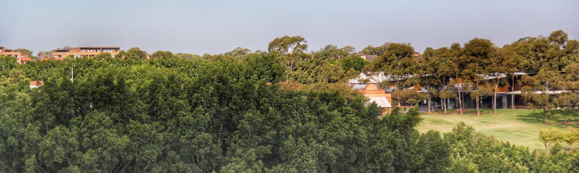 Cherrybrook, NSW, Australie