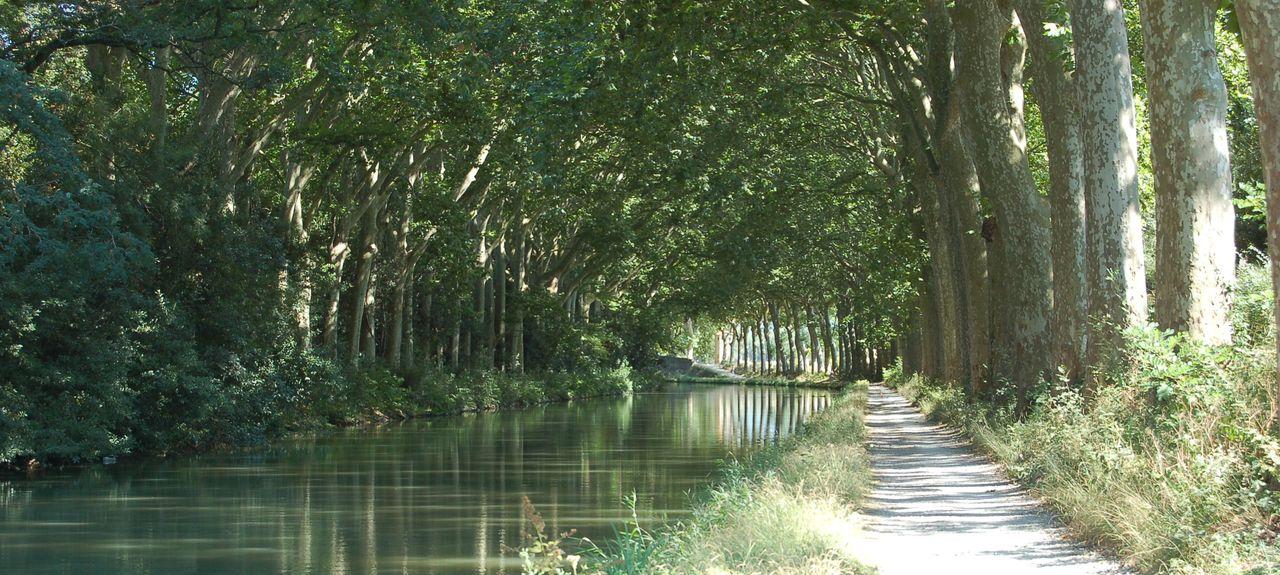 La Cité Médiévale, Carcassonne, Occitanie, France