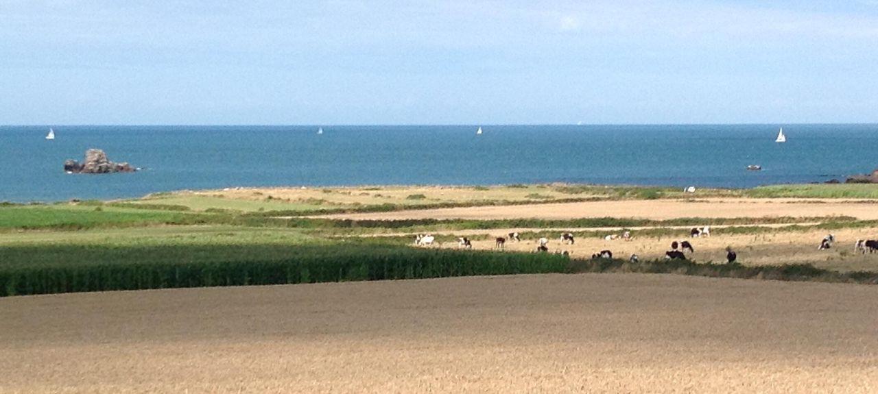 Cotentin Peninsula, France
