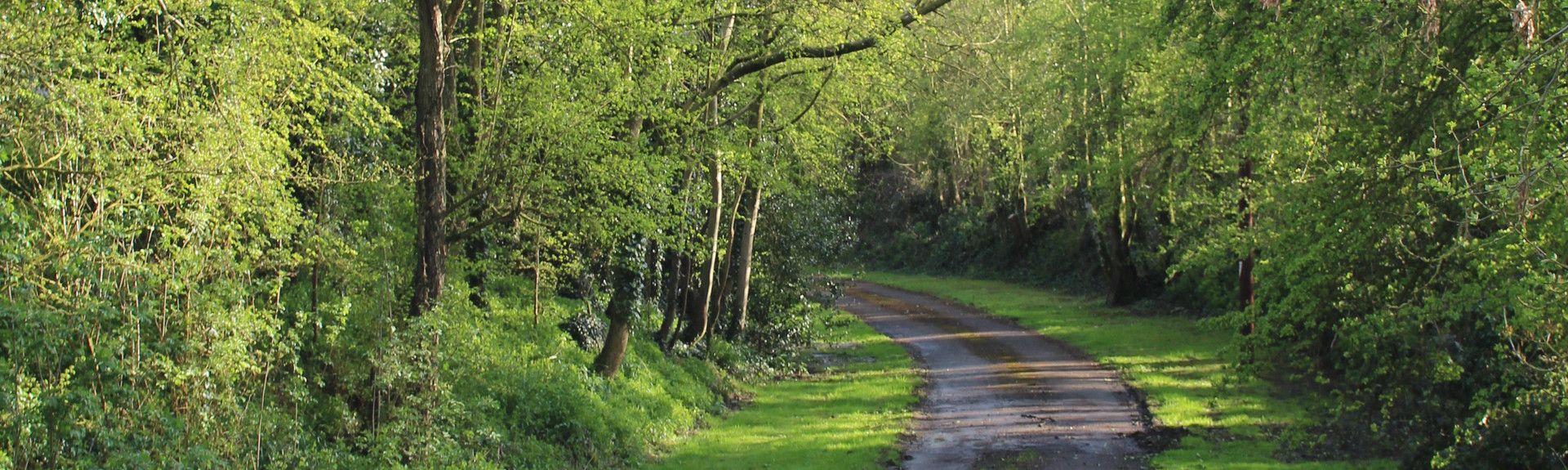 Somerford Keynes, Cirencester, Inglaterra, Reino Unido