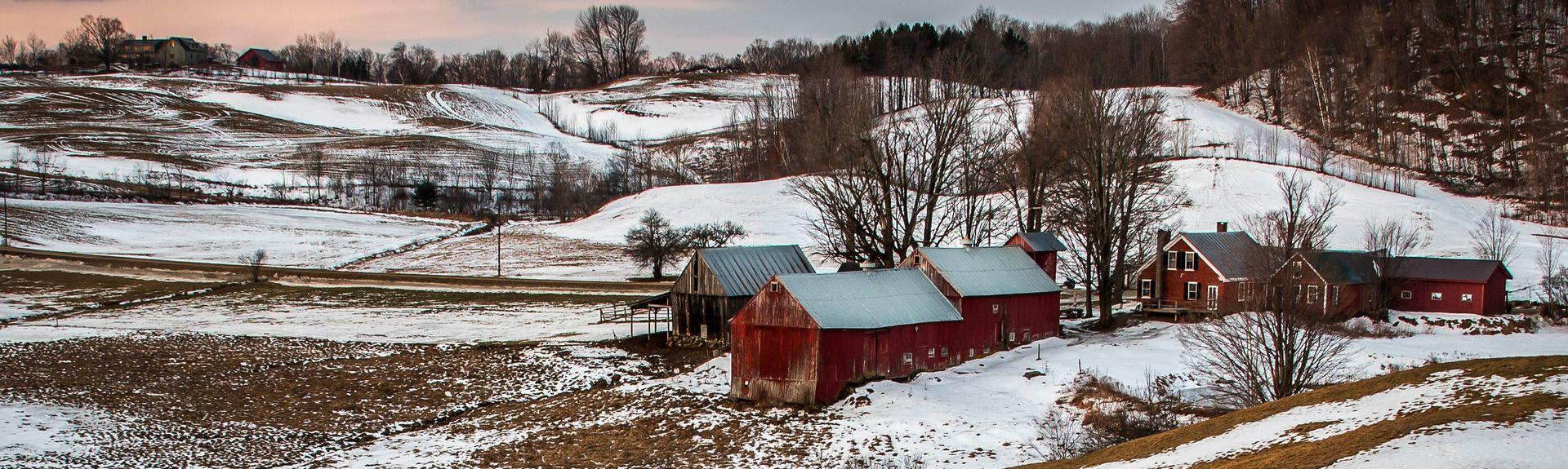 Reading, Vermont, Verenigde Staten