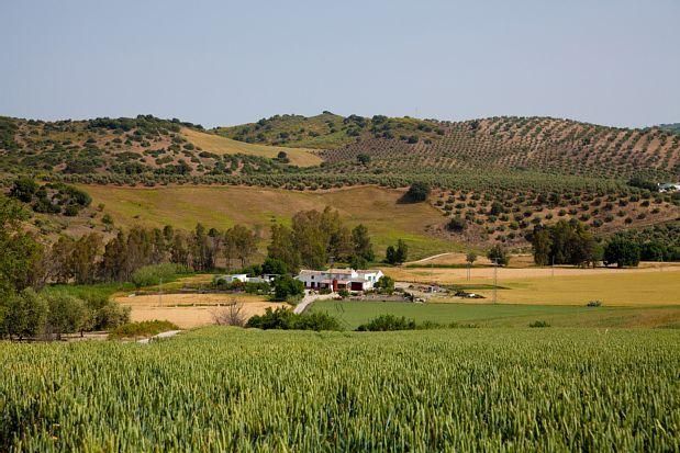 El Saucejo, Andalousie, Espagne