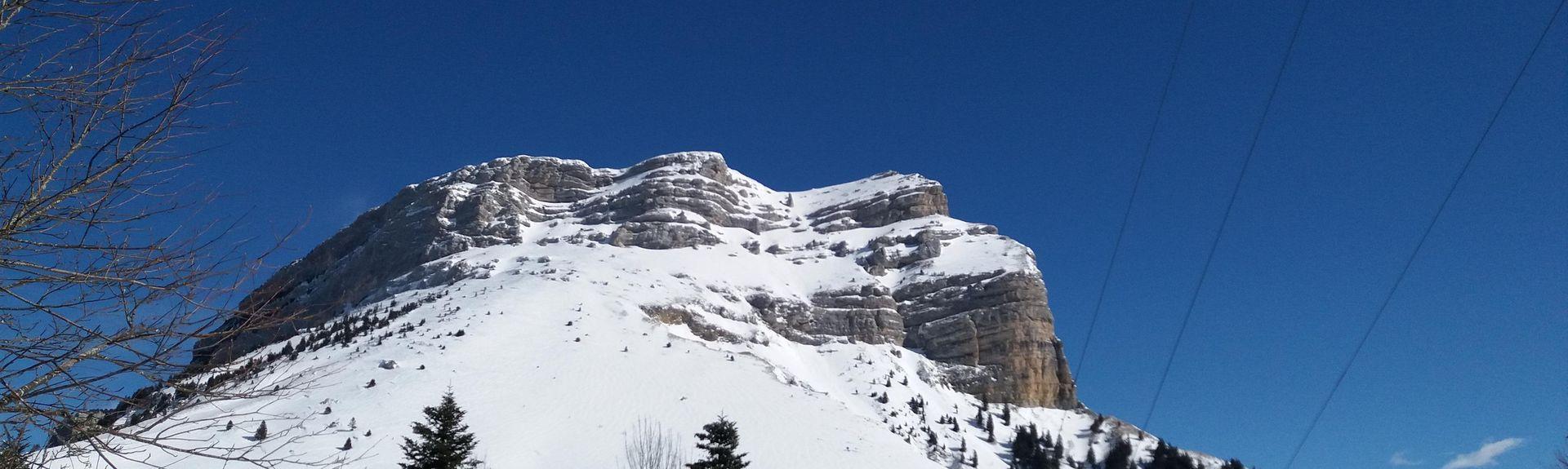 Sarcenas, Auvergne-Rhône-Alpes, Frankrig