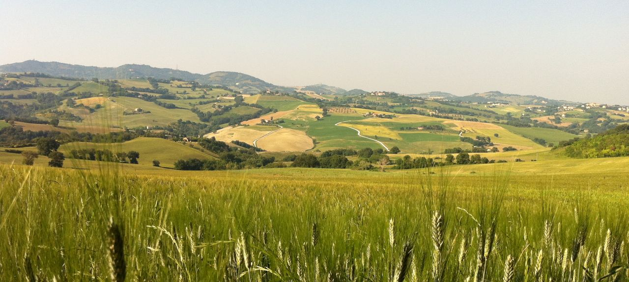 Montelabbate, Pesaro and Urbino, Italy