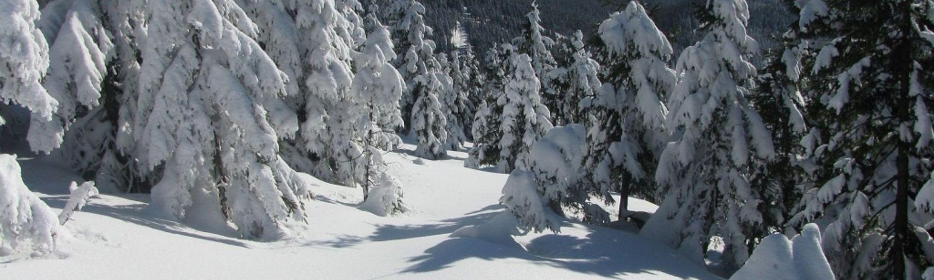Rokytnice nad Jizerou, Liberec (region), Czech Republic