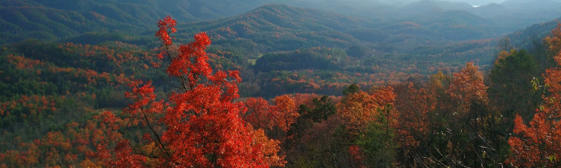 Alcoa, Tennessee, United States
