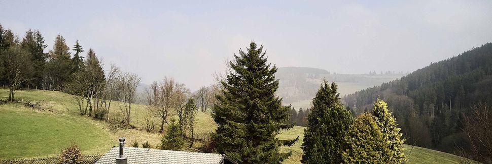 Stryck, Willingen, Hessen, Deutschland