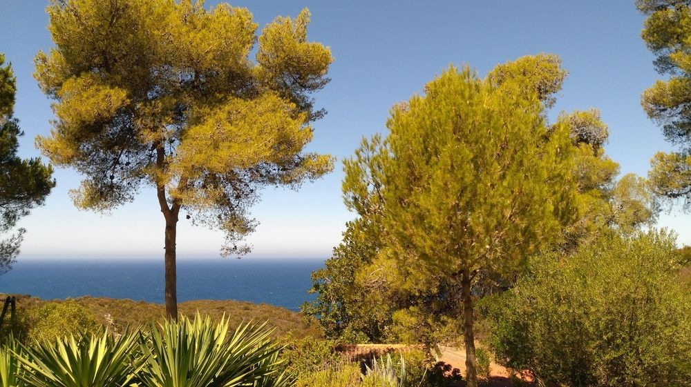 Strand von Calvi, Calvi, Korsika, Frankreich