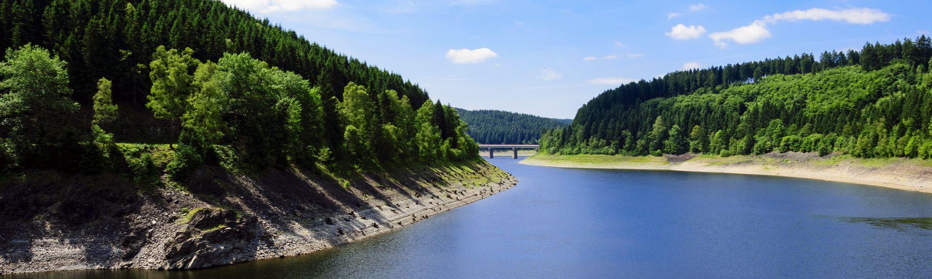 Nationalpark Harz, Harz, Nedersaksen, Duitsland