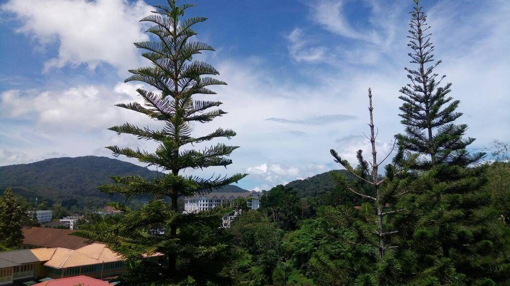Pahang, Malasia