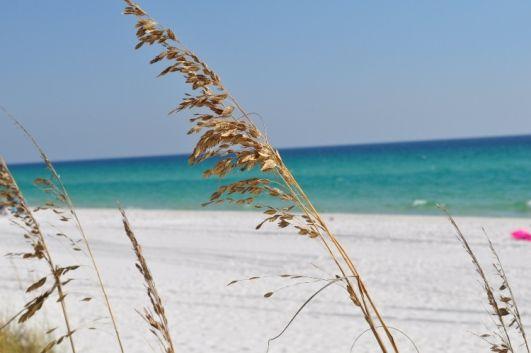 Sanddollar Townhomes, Destin, FL, USA