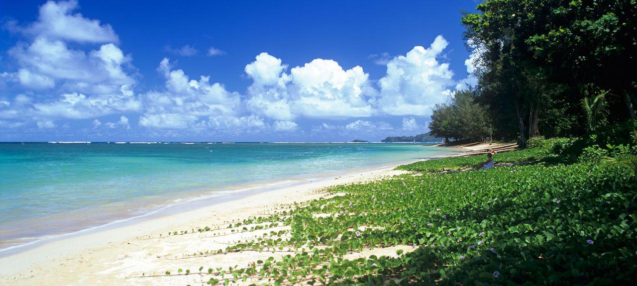 Anini Beach Kalihiwai Hawaii United States