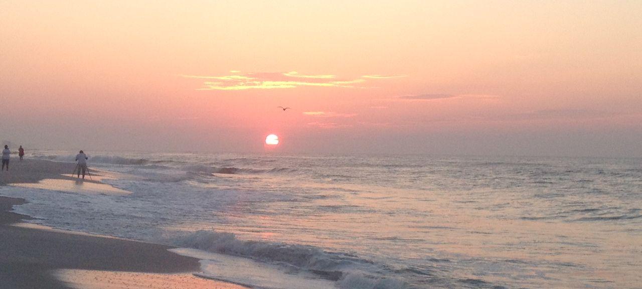 Phoenix 1 (Orange Beach, Alabama, United States)