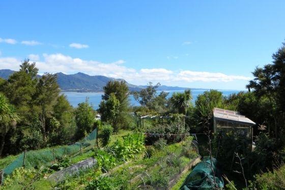 Pakawau, Tasman, New Zealand