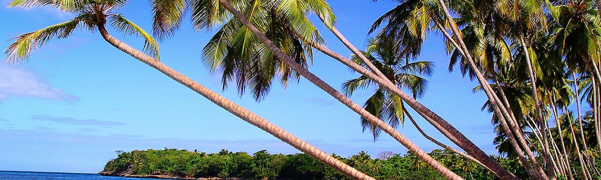 Bas Vent, Deshaies, Basse-Terre, Guadeloupe