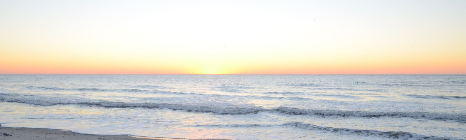 Pelican's Watch, Myrtle Beach, SC, USA