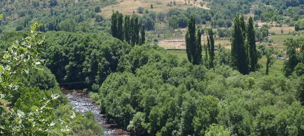 Cespedosa de Tormes, Castile and León, Spain